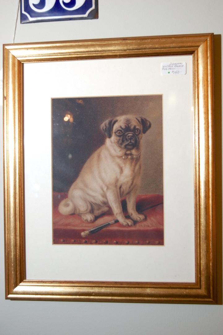 Vintage Framed Pug Dog Print