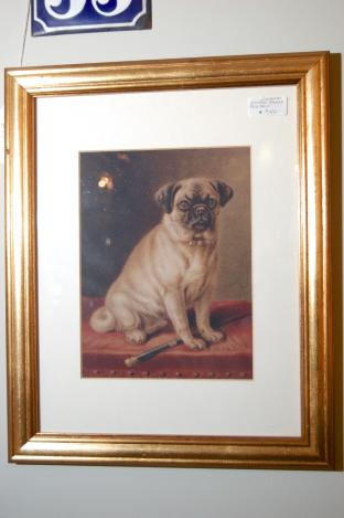 Vintage Framed Pug Dog Print